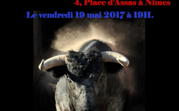 EXPO MICHEL VOLLE - Nîmes