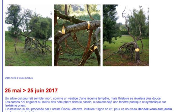 Exposition Ogon no ki – Elodie Lefebvre - Villefrance-de-Rouergue