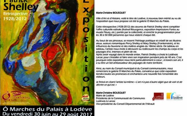 Exposition rétrospective de Patrick Shelley - Lodève