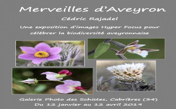 Exposition à la Galerie Photo des Schistes - Cabrières