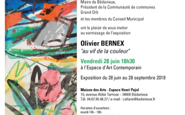 OLIVIER BERNEX - L'ESPACE D'ART CONTEMPORAIN  - Bédarieux