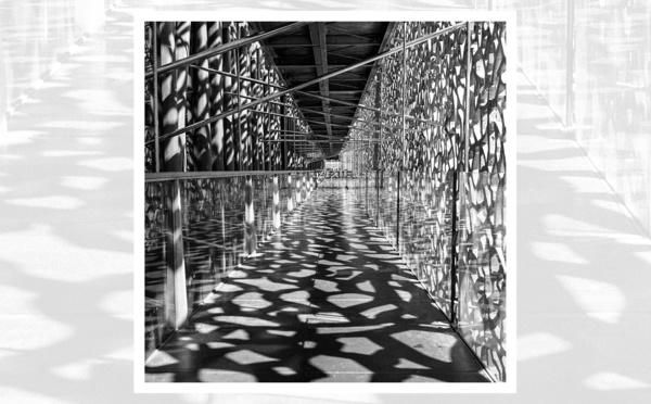 EXPOSITION GARE EXPO à Lamalou-les-Bains - Philippe Hernandez : Mon Chemin Noir et Blanc